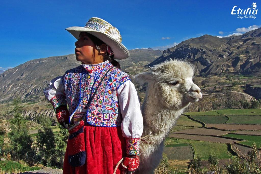 Peru Canionul Colca