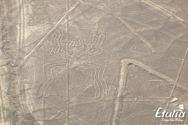 Zbor deasupra liniilor Nazca img2