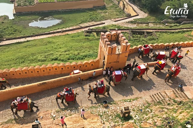 India - Jaipur Fortul Amber
