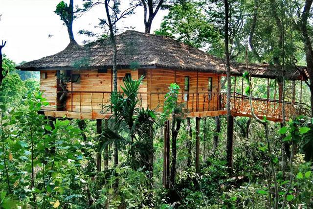 casuta Tranquil Plantation Wayanad, Kerala