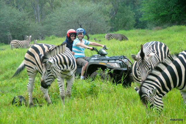 Safari Mauritius
