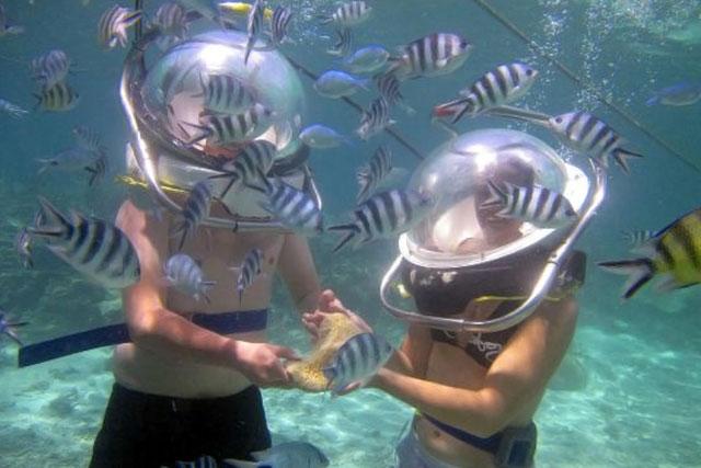 Activitati subacvatice Mauritius