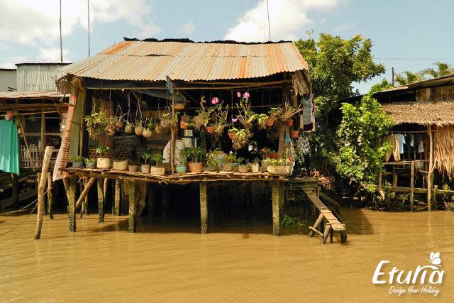 Locuinta Delta Mekong