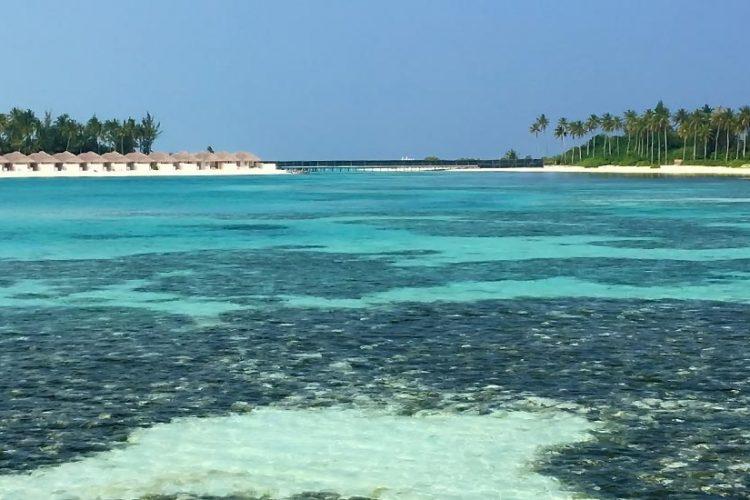 banner-maldive3