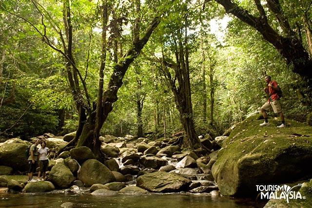 Taman Negara Malaezia