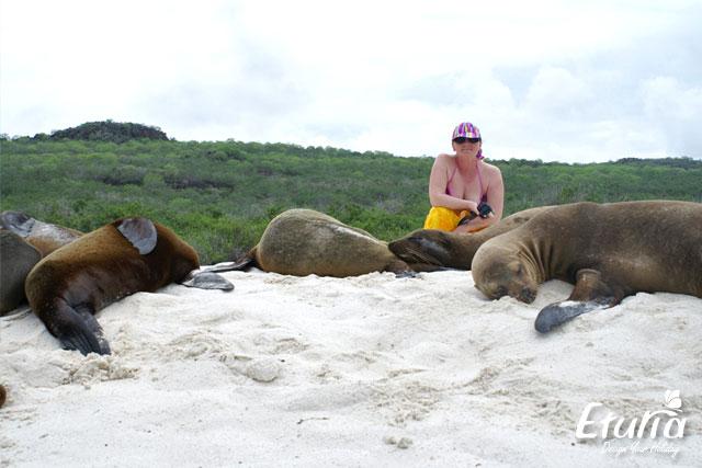 Lei de mare Galapagos