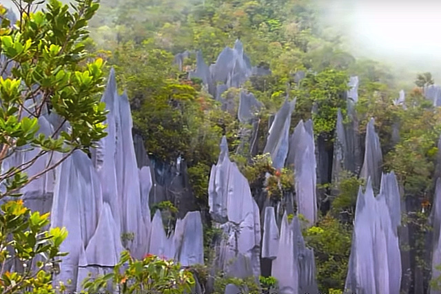 Muntele Gunung Mulu