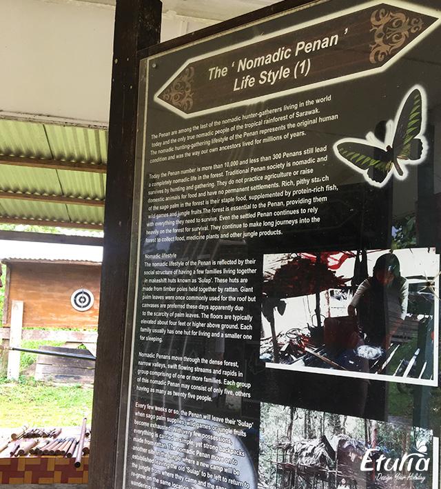 Info Nomadic Penan