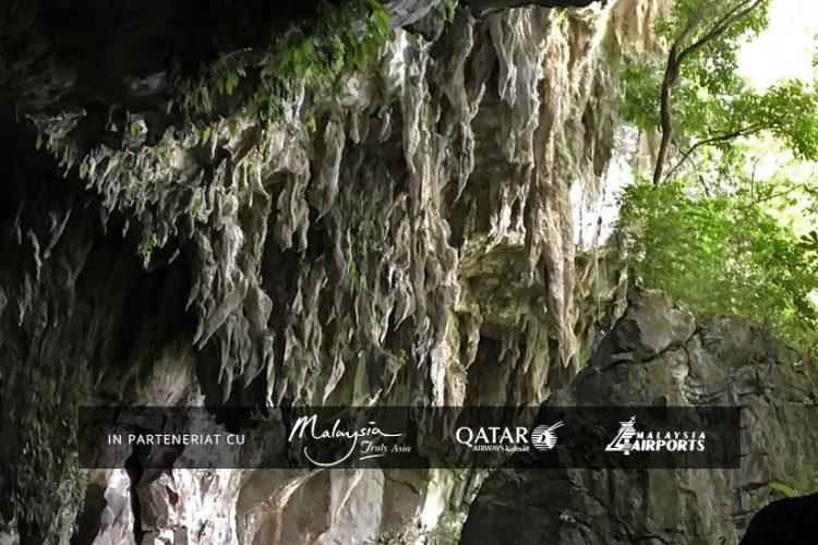 Banner Parcul National Gunung Mulu