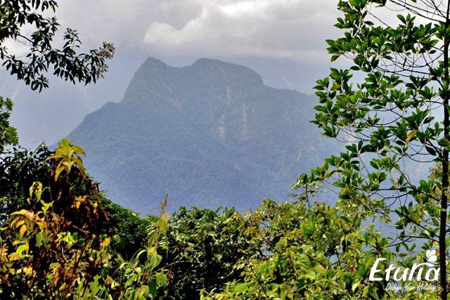 Panorama Borneo