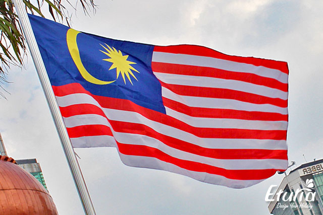 Drapelul Malaeziei