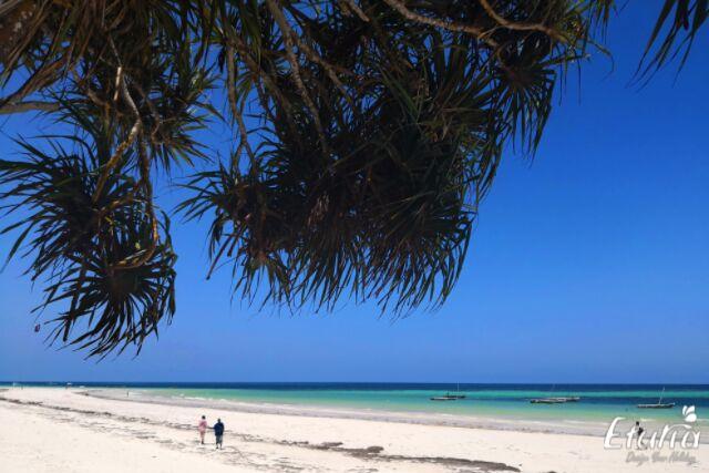 plaja mombasa kenya