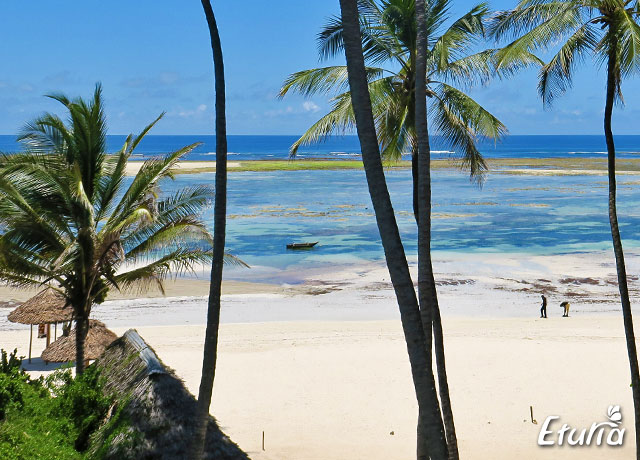 plaja Diani Beach, Kenya