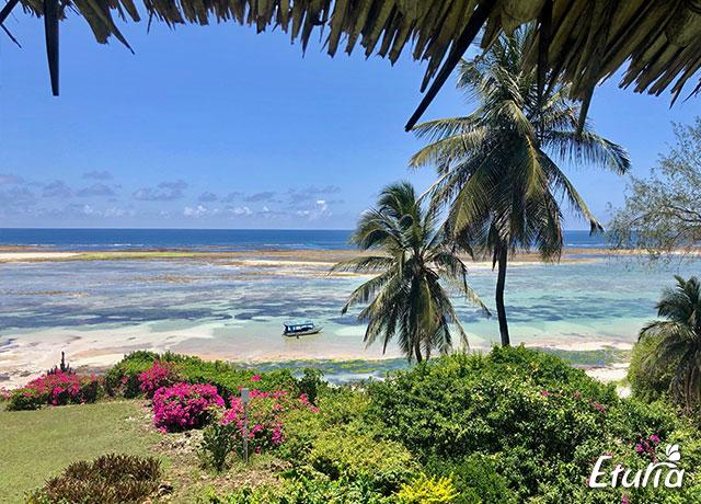 plaja Diani Beach