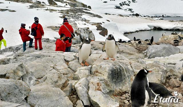 peisaj-Antarctica