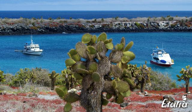 peisaj-Galapagos