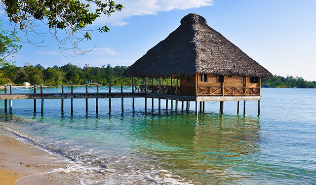 In Bocas del Toro
