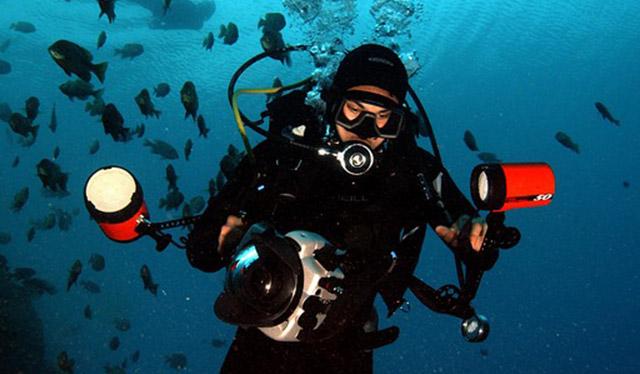 Diving in Panama