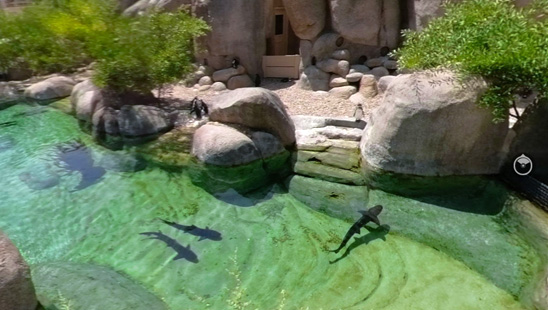 Gradina Zoologica din San Diego