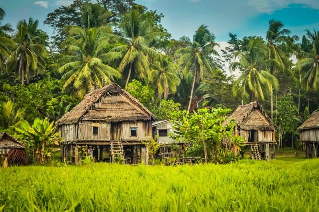 Sat din Papua Noua Guinee/ © michalknitl - stock.adobe.com