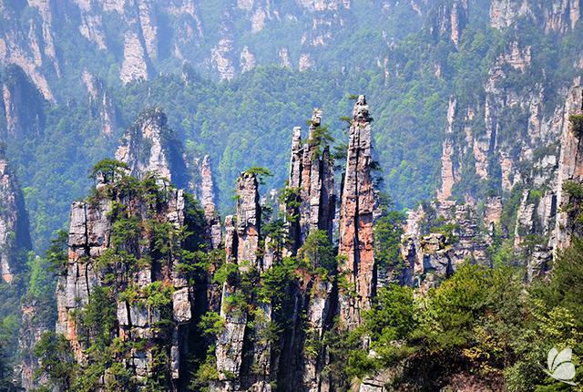 Parcul National Zhangjiajie