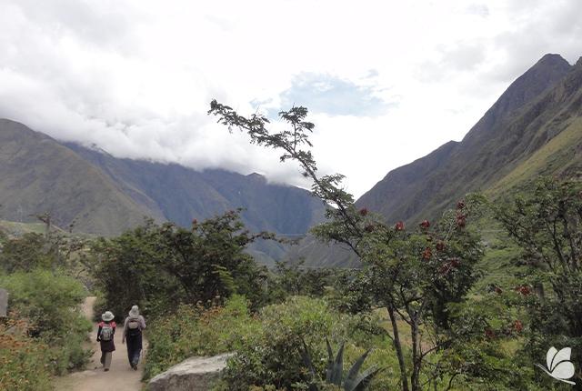 Aventura in Peru