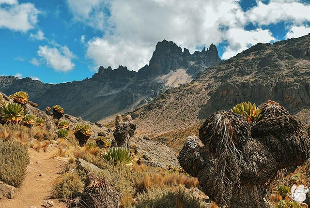 Muntele Kenya