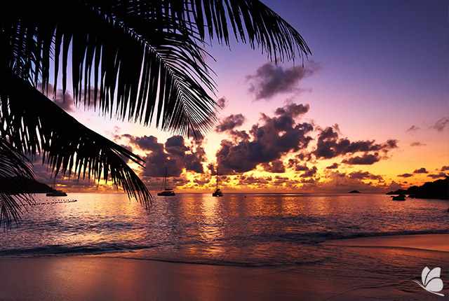 Insula Praslin, Seychelles