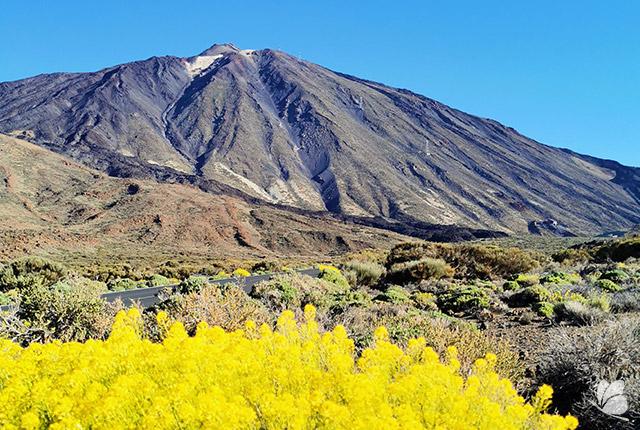 Vedere spre Teide